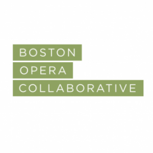 Profile picture of Boston Opera Collaborative